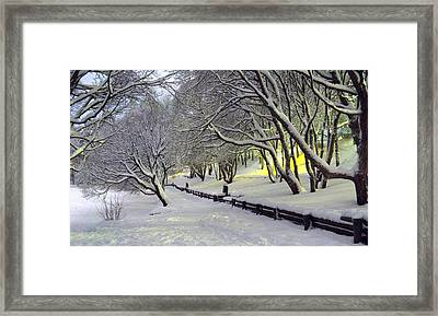 Framed Print featuring the photograph Winter Scene 1 by Sami Tiainen