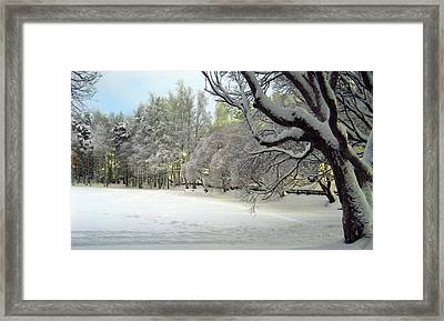 Framed Print featuring the photograph Winter Scene 3 by Sami Tiainen