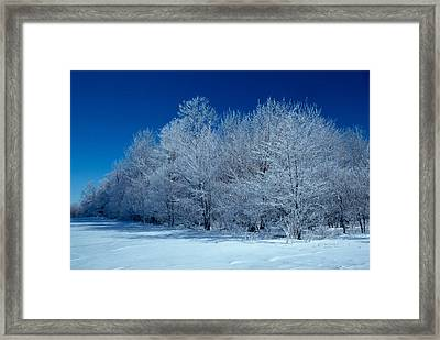 Winter Scene Framed Print by Raju Alagawadi