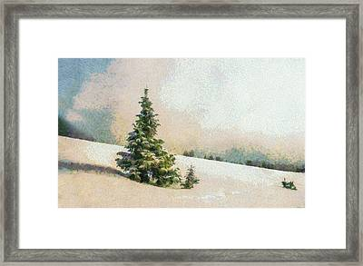 Winter Scenery Art - Pine Tree On A Snow Mountain Framed Print by Wall Art Prints