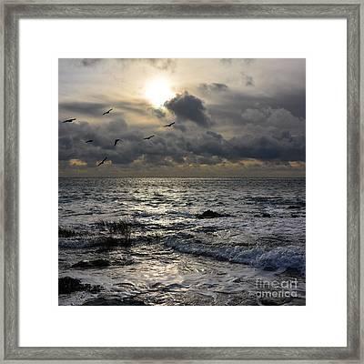 Winter Seascape Framed Print
