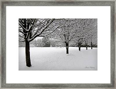 Winter Serenity Framed Print