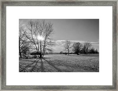 Winter Shadow Framed Print by Terence Davis
