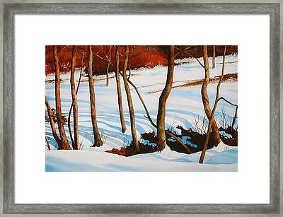 Winter Shadows Framed Print