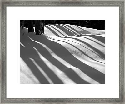 Winter Shadows Framed Print