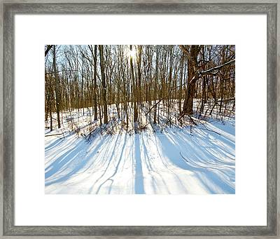Winter Shadows Framed Print by Tim Fitzwater