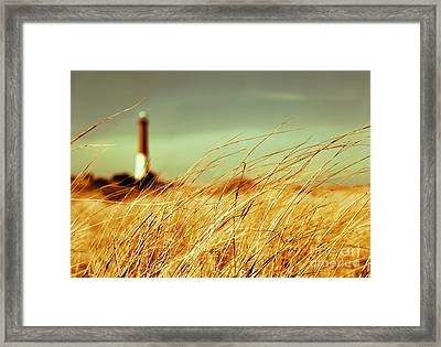 Winter Shore Breeze Framed Print