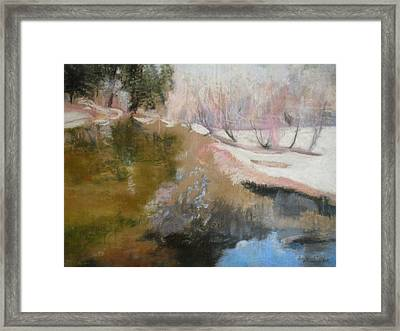 Winter Showoff Framed Print by Anita Stoll