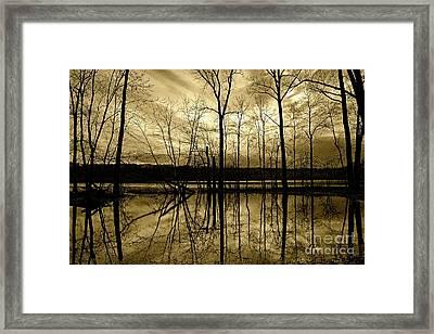 Winter Silence Framed Print