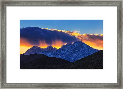 Sudden Splendor Framed Print