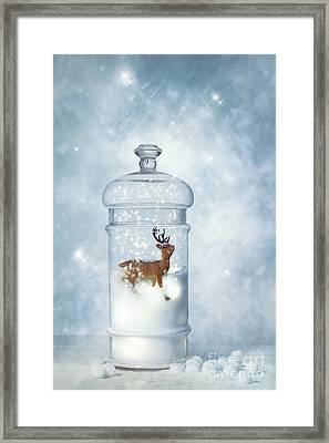 Winter Snow Globe Framed Print