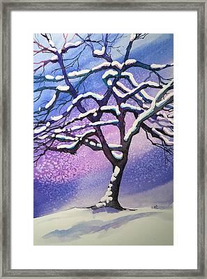 Winter Snowstorm Framed Print by Christine Camp