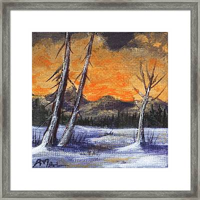 Winter Solitude #1 Framed Print
