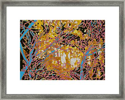 Winter Solstice Sold Framed Print by Ray  Petersen