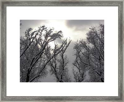 Winter Solstice Utah Framed Print