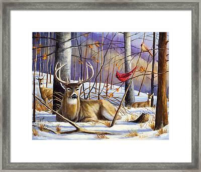 Winter Song Framed Print by Michael Scherer