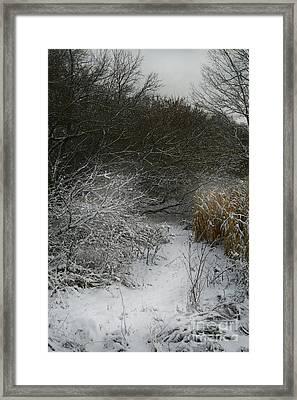 Framed Print featuring the photograph Winter Stew by Jan Piller