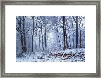 Winter Still Framed Print by Ron Jones