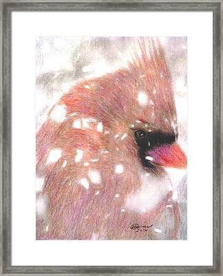 Winter Storm Framed Print by Angela Davies
