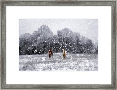 Winter Storm Framed Print by Darren Fisher