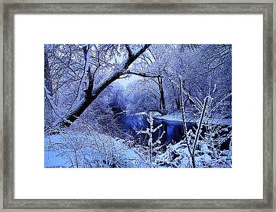 Winter Stream Framed Print by Phil Koch