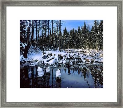 Winter Stream Framed Print by Romeo Koitmae