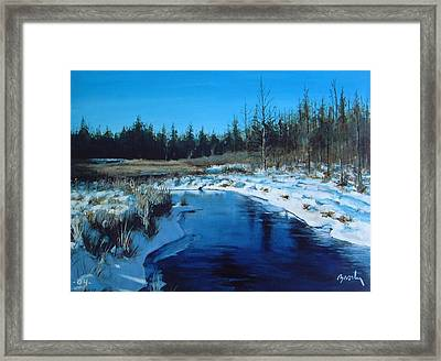 Winter Stream Framed Print by William  Brody
