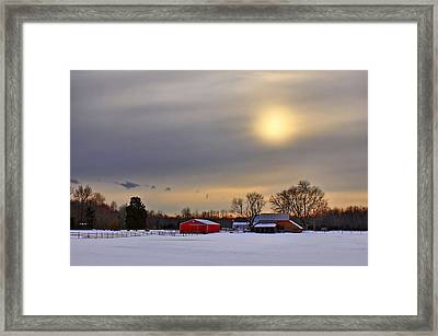 Winter Sun Framed Print by Evelina Kremsdorf