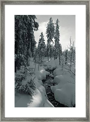 winter sun in Upper Harz - monochrome version Framed Print by Andreas Levi