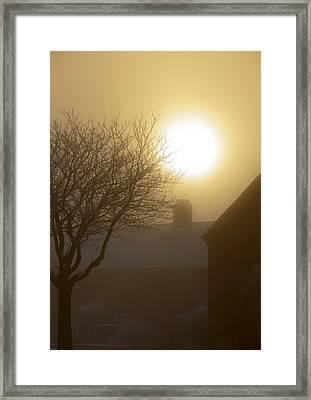Winter Sun Framed Print by Svetlana Sewell