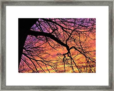 Winter Sundown Framed Print by John Adams