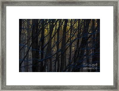 Winter Sunrise Framed Print by Diane Diederich