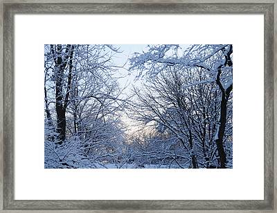 Winter Sunrise Framed Print by Dimitri Meimaris