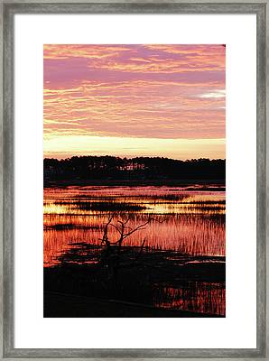 Winter Sunrise Framed Print by Margaret Palmer