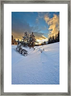 Winter Sunset Framed Print by David Andersen