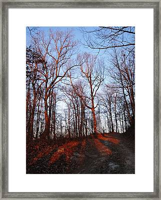 Winter Sunset In Georgia Mountains Framed Print by Angela Murray