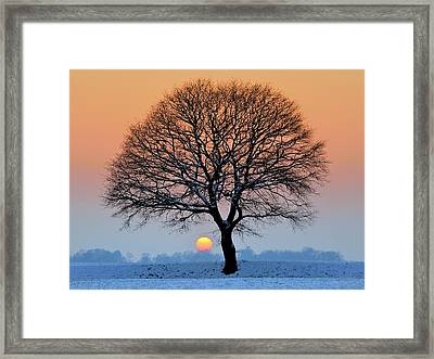 Winter Sunset With Silhouette Of Tree Framed Print by Pierre Hanquin Photographie