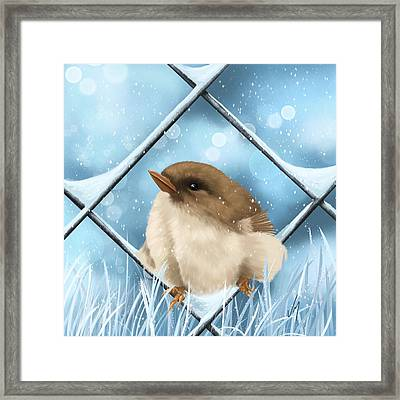 Winter Sweetness  Framed Print by Veronica Minozzi