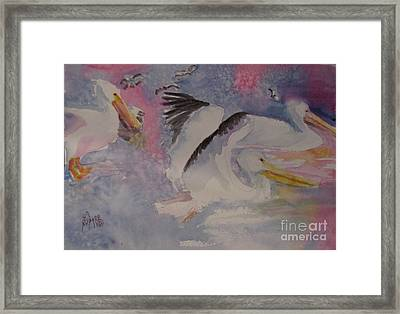 Winter Texans Framed Print by Linda Rupard