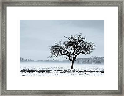 Winter Framed Print by Thorsten Scheuermann