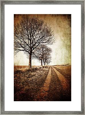 Winter Track With Trees Framed Print by Meirion Matthias