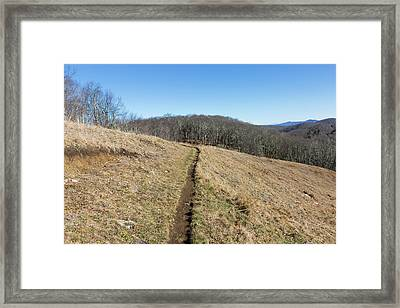 Winter Trail - December 7, 2016 Framed Print