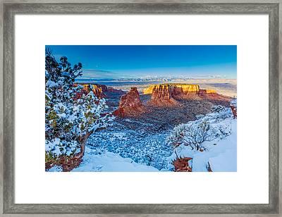 Winter Trails  Framed Print