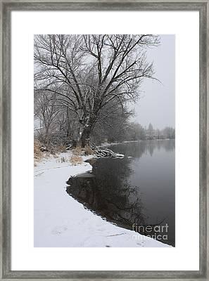 Winter Tree Reflecting On Snowy Yakima River Framed Print by Carol Groenen