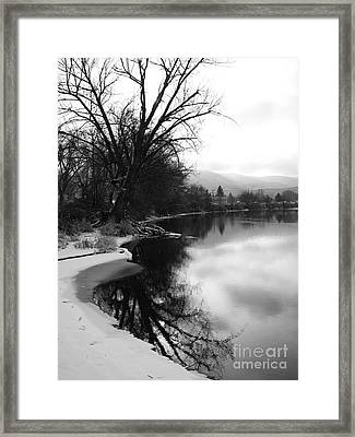 Winter Tree Reflection - Black And White Framed Print by Carol Groenen