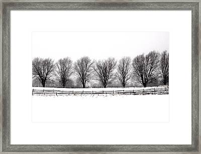 Framed Print featuring the photograph Winter Treeline by Don Nieman