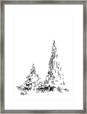 Winter Trees 2 - 2016 Framed Print