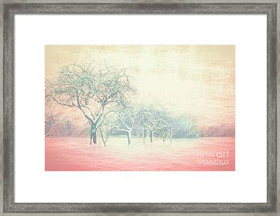 Winter Trees Abstract Framed Print