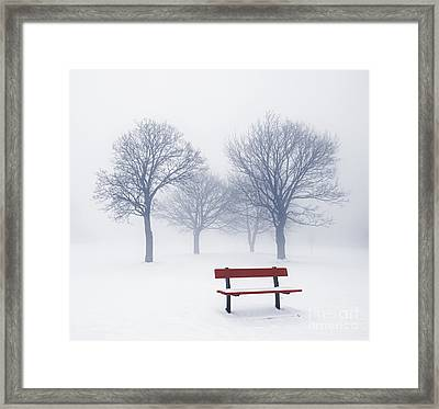 Winter Trees And Bench In Fog Framed Print