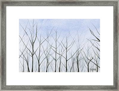 Winter Trees Framed Print by Beverly Brown